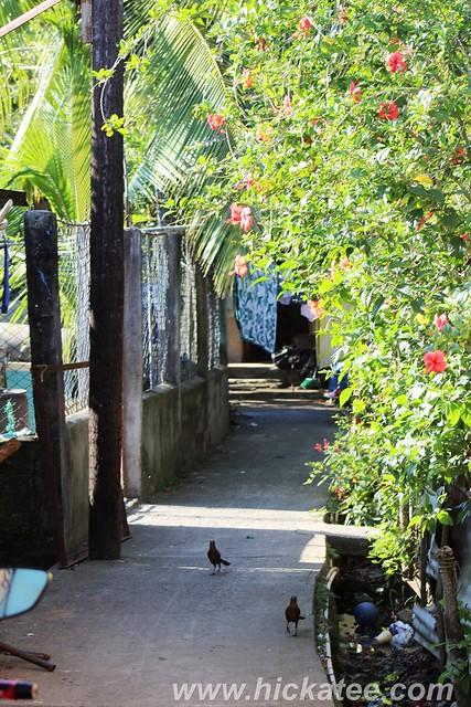 Livingston, Guatemala - secenes 027