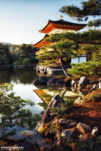 sunset water japan garden temple japanese golden buddhism