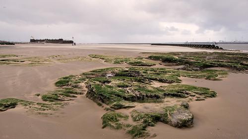 uk winter sea england seascape beach birds clouds liverpool rocks fort widescreen oru 169 thebeatles newbrighton 2016