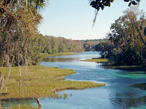 water river landscape scenery florida marsh dunnellon