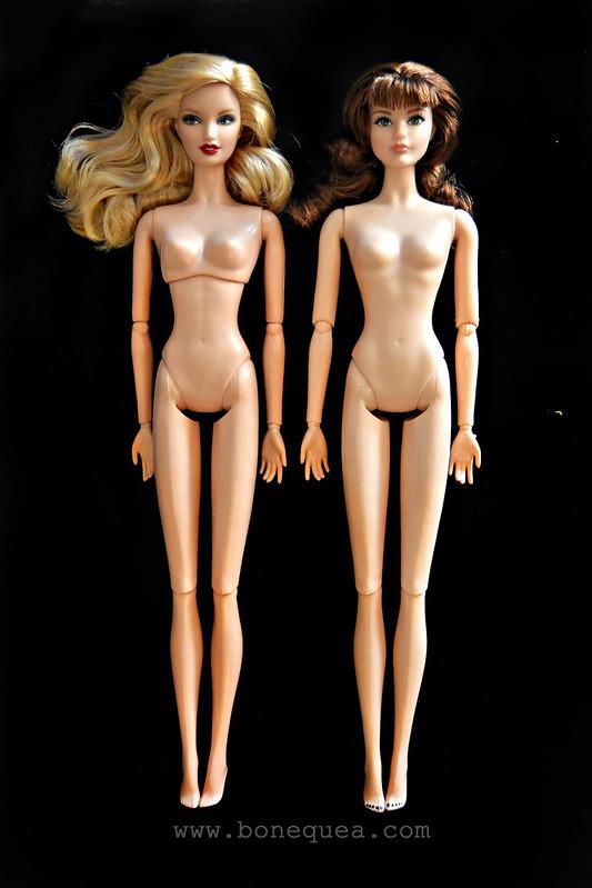 Pivotal & articulated body comparison