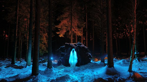 Winter ghost | by palateth
