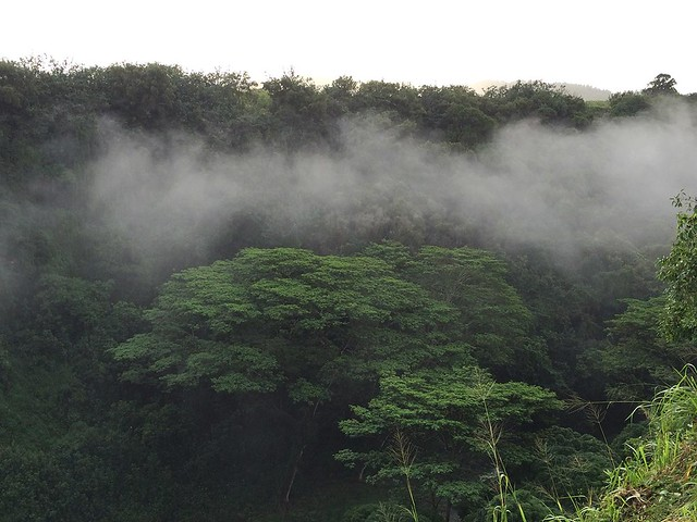Mist at Wailua Falls