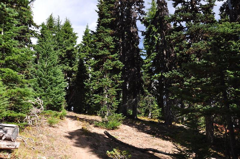Gunsight Butte trail