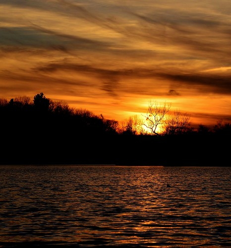 sunset reichards lake westsandlake ny new york rensselaer upstate 518 clouds sun tree silhouette water orange kayak rgrennan rwgrennan ryan grennan nikon d610