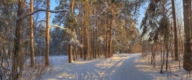 winter, my dear