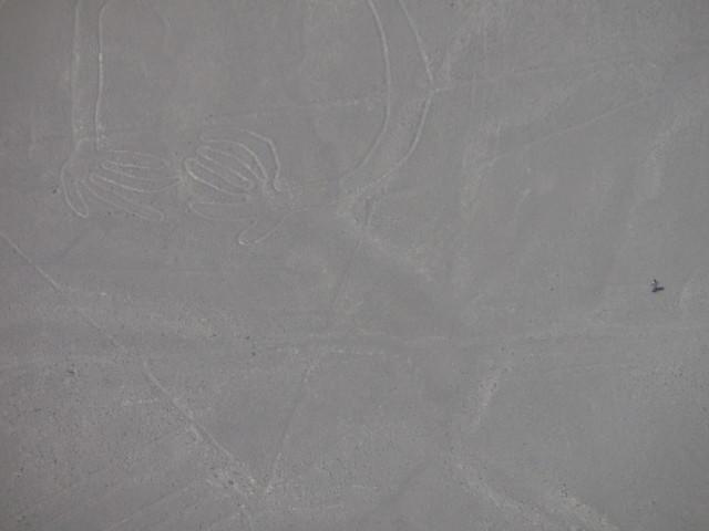 Líneas de Nazca. Nazca (Perú)