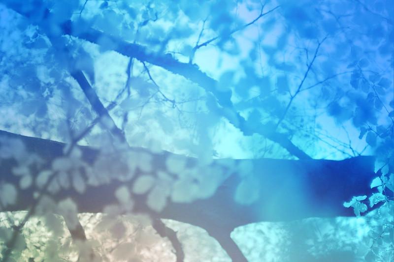 blur-dreamy-texture-texturepalace-76