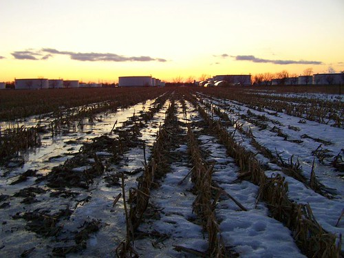 winter sunset ohio snow cold clouds rural cornfield farm rows