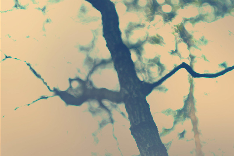 blur-dreamy-texture-texturepalace-13