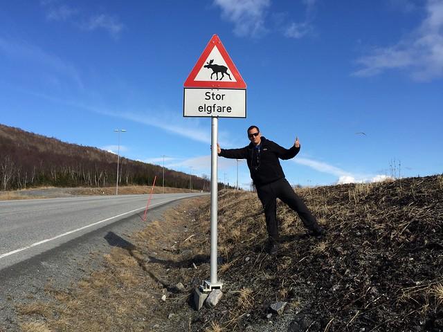 Señal de cuidado ante el cruce de alces en Noruega