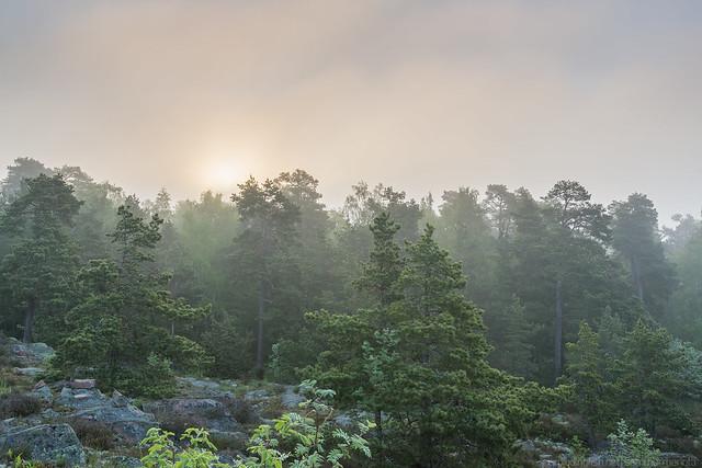 Sunrise on Badhusberget