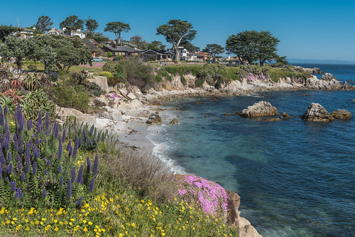 Pacific Grove, California | by diana_robinson