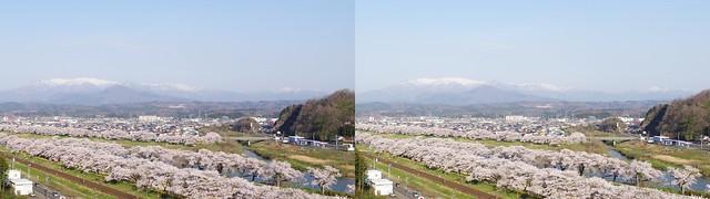 Hitome-Senbon-Zakura, 4K UHD, stereo parallel view