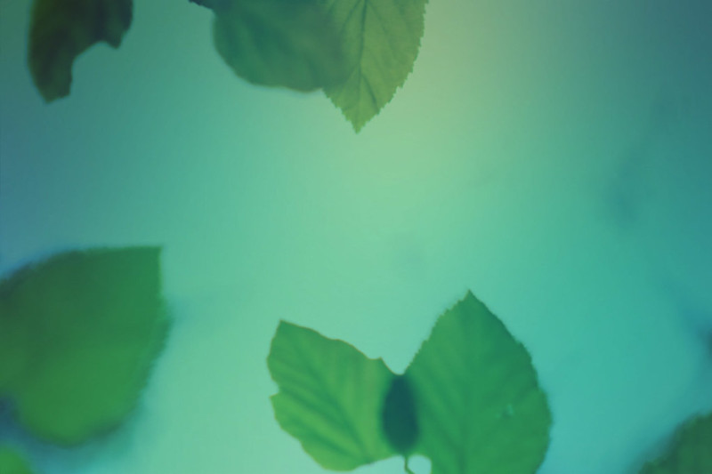 blur-dreamy-texture-texturepalace-56