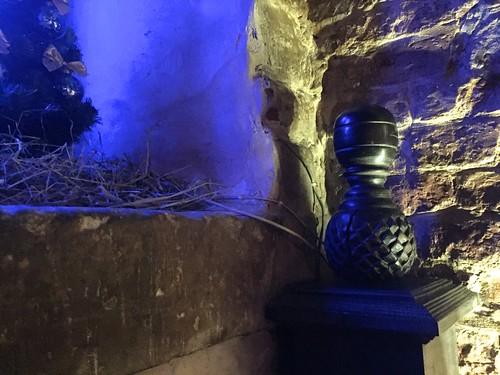 Під синьою пляшкою IMG_2526 | by akaplunenko