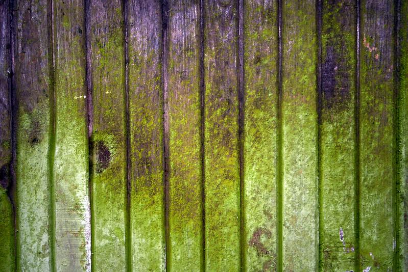 wood-fence-texture-texturepalace-15