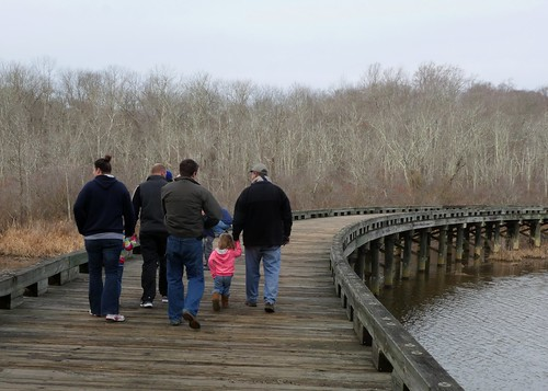 Photo of small group of hikers on a wooden boardwalk
