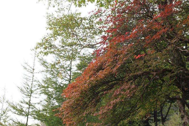 2014-09-14_00131_男体山.jpg