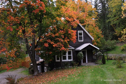 autumn red house canada tree fall fairytale herbs britishcolumbia branches cottage lawn foliage nakusp westkootenay