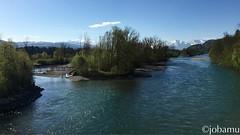 Frühlingsimpressionen #Spring #Frühling #nature #river #Aare #Rubigen