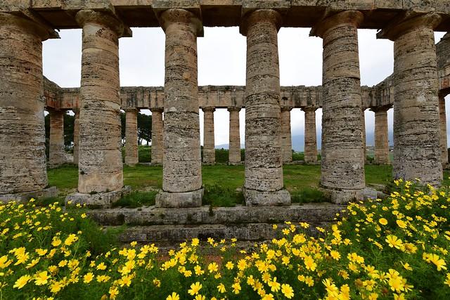 Segesta Temple, Sicily, March 2016 089