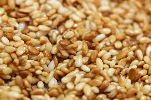 Lightly Toasted Sesame Seeds Close | by Chris Mower