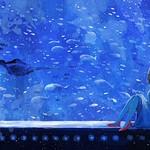 Title:ミッドナイトブルー-Pixiv_illustrator:のみや(nomiya3838)-Source:ID51176121 #オリジナル #青 #水族館 #ふつくしい #青の衝撃 #オリジナル1000users入り #orzwei