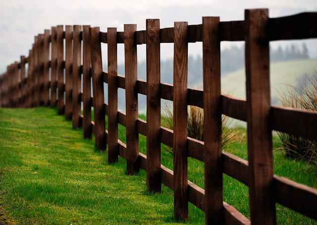 361/365 Fenced in