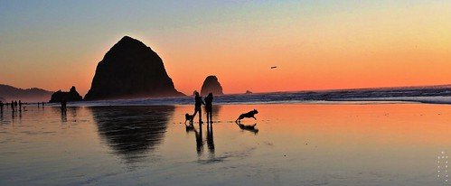 rock tranquil love portland canonbeach pacificnorthwest oregon poem thebookthatdreams grantpfabian theopenwall thelook best fave flickr yahoo google free bokeh soulmate eos5dmk3 seaside twilight soft warm glow flickrcoverphoto naturaleza air 桜 cielo peace hope black wave outdoors poetry friends summer me wow depthoffield light dogs silhouette hiking mer digital flickrtop50 stack classic vacation blue nurture water beach sky night red art sun clouds landscape dof sea curves family people curvy pink orange bird sunset bestofflickrsbest nature