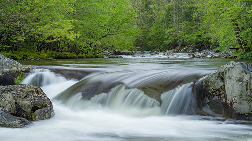 park us unitedstates tennessee gatlinburg greenbriar greatsmokymountainsnationalpark littlepigeonriver usanationalpark smokymountainstripspring2016