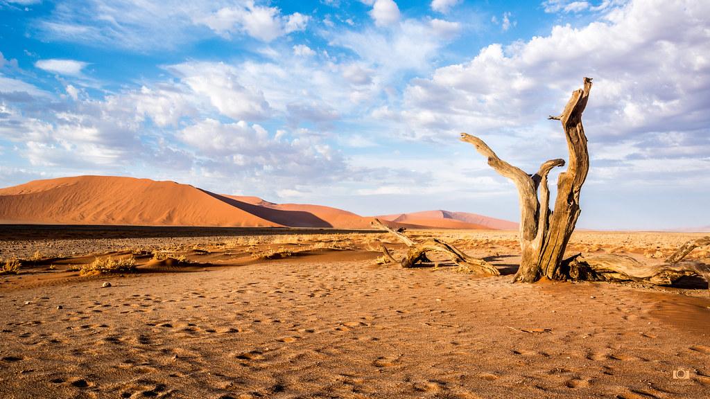 Sossusvlei Namibia Desert 4k Wallpaper Desktop Backgroun