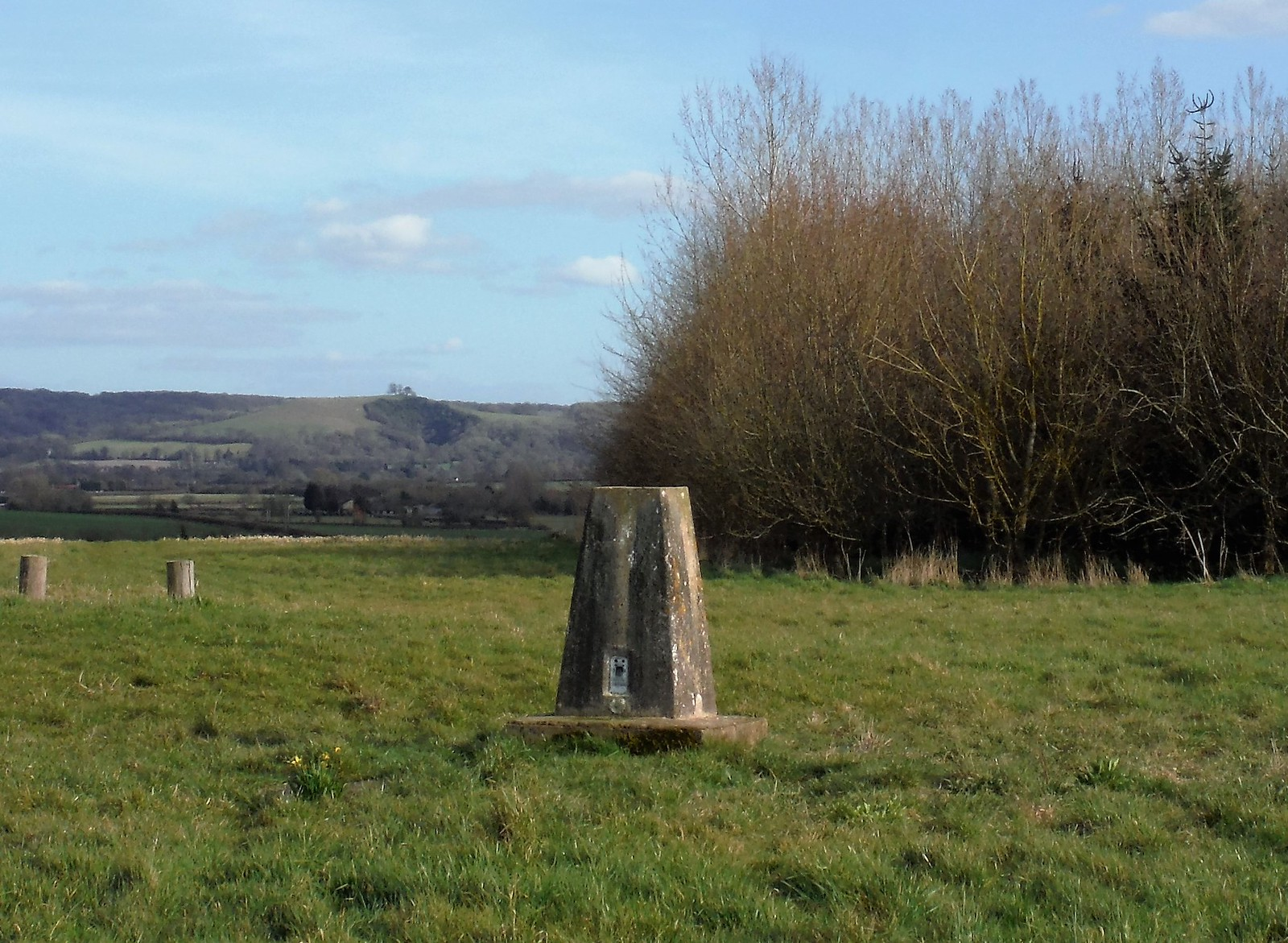 Trigpoint in Michael R. Roads Community Woodland SWC Walk 193 Haddenham to Aylesbury (via Gibraltar and Ford)