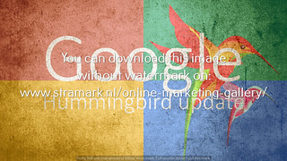 Google Hummingbird update raw birds simple | by Zoekmachine Marketing Bureau