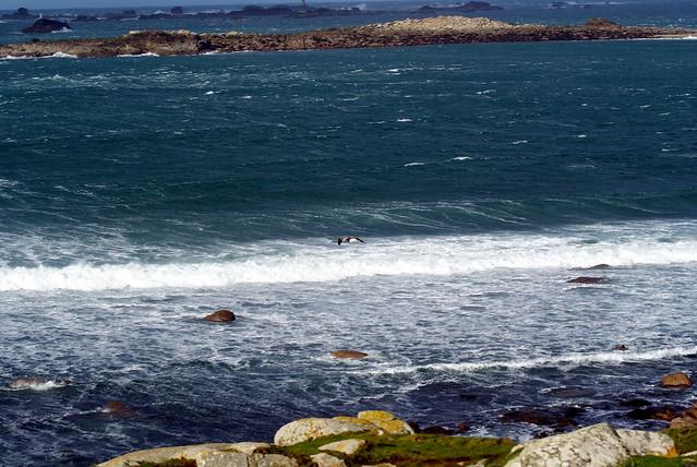 Coup de vent Landunvez Finistère Bretagne