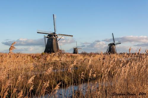 blue winter sky cloud brown sun cold colour mill reed netherlands windmill dutch grass nederland riet kinderdijk molen zuidholland overwaard