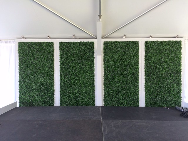 Boxwood Backdrop Walls