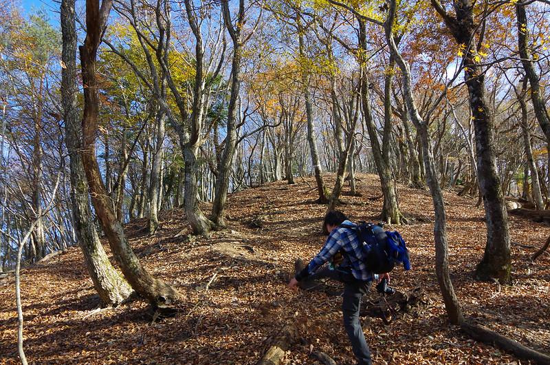 20141122-武奈ヶ岳(Saku)-0013.jpg