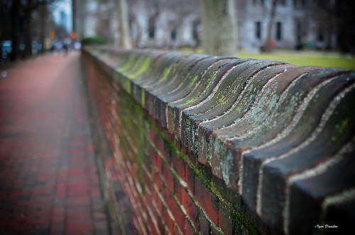 life street blur brick philadelphia wall 35mm march spring nikon warm dof view bright bokeh pov pennsylvania walk think belief mind thinking f18 heavy opinion d90 мысли