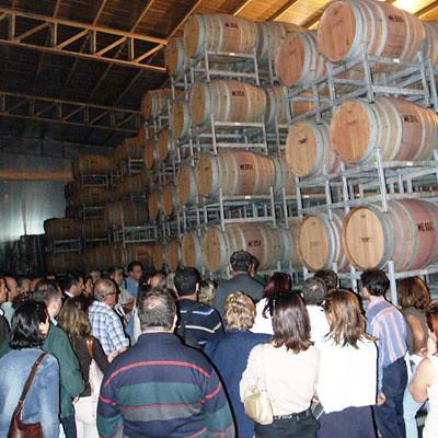 Kavaklidere Winery