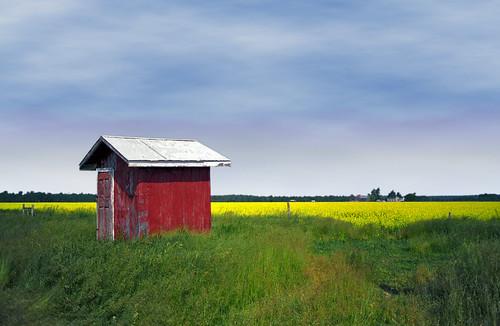 2002 red ontario canada topv111 geotagged shed topvaa interestingness31 i500 i100 abigfave anawesomeshot colorphotoaward impressedbeauty geo:lat=4499919044504815 geo:lon=8130247592926025 superhearts kitchenprint