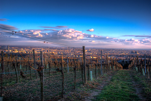 View over Vienna (first HDR) | by Tom Steiner