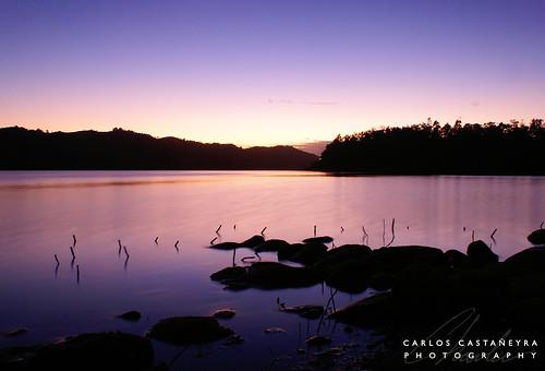 pink naturaleza lake color nature water colors landscape lago dawn agua purple puertorico rosa paisaje colores charlie amanecer rosita violeta rosado quebradillas guajataca sonyalpha carloscastañeyra