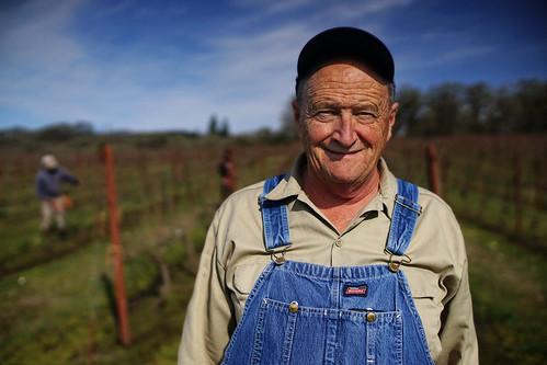 Dad in the Vineyard   by jamesfischer