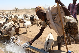 Ethiopia: worst El Niño induced drought in 50 years | by EU Civil Protection and Humanitarian Aid