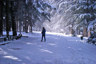 winter in Ijevan... Tavush, Armenia. | by daniel2085