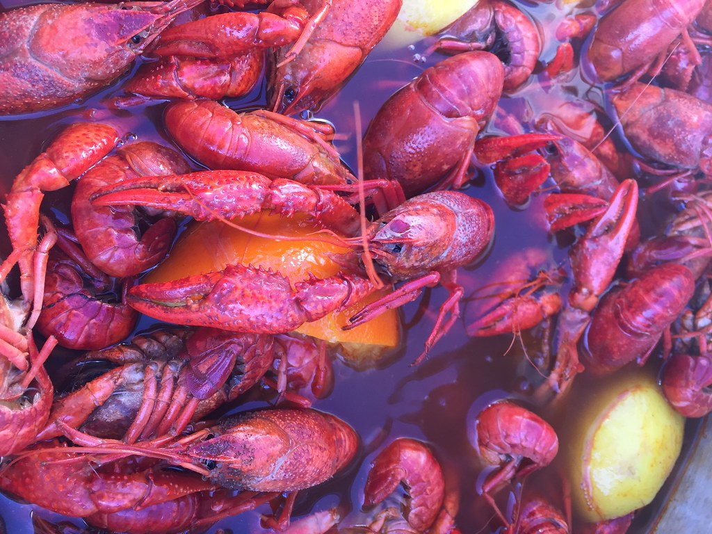 Order Live Crawfish shipped to your door