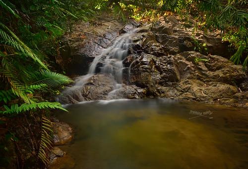 waterfall cool ferns dri pertak kkb