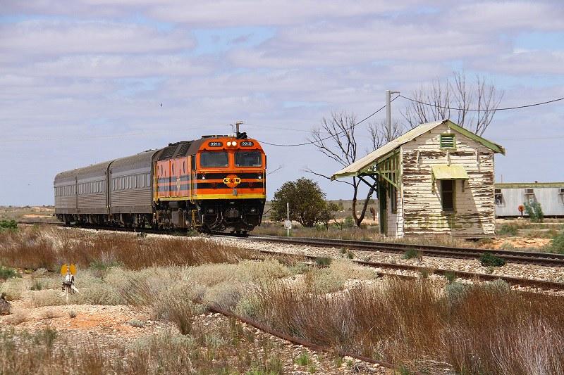 Forrest station by David Arnold
