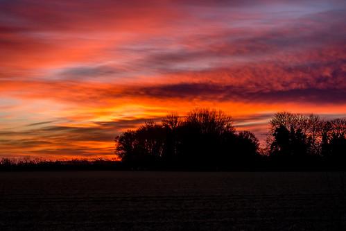 uk trees winter cold field clouds sunrise 35mm countryside fuji norfolk norwich fujifilm xe1
